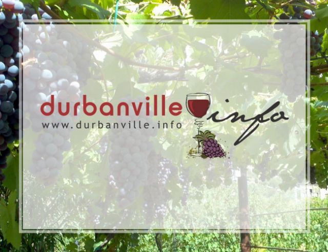 DurbanvilleINFO Business Information Portal